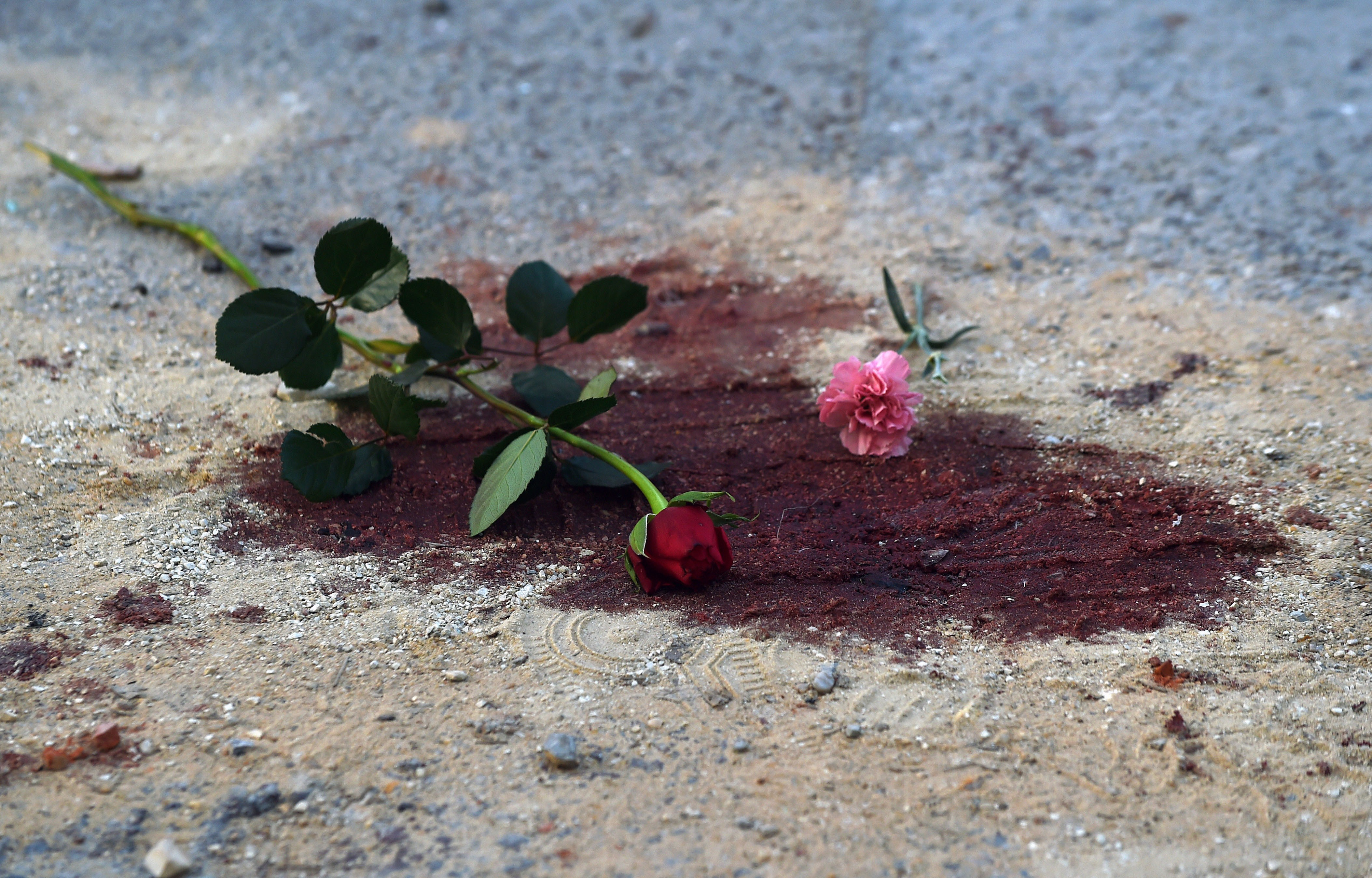 "Roses are seen on bloodstains in front of the National Bardo Museum in Tunis on March 19, 2015 during a demonstration in solidarity with the victims of an attack on the museum the previous day killing 21 people. Tunisia has vowed to wage ""a merciless war against terrorism"" after the carnage at its national museum but it has struggled to draw up a strategy to counter the jihadist threat. AFP PHOTO /FADEL SENNA        (Photo credit should read FADEL SENNA/AFP/Getty Images)"